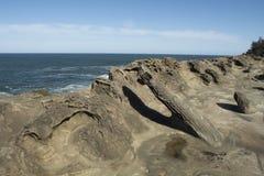 Образования песчаника на акрах парке штата берега, Орегоне Стоковые Фото