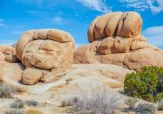 Образования песчаника на зоне утеса черепа в национальном парке дерева Иешуа california США стоковая фотография rf