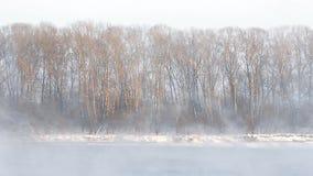 Образования льда на реке Поднимающ туман видеоматериал