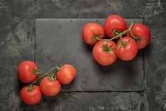 Образовывает томаты Стоковые Изображения RF