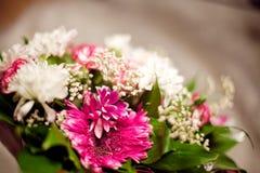 образуйте цветки стоковое изображение
