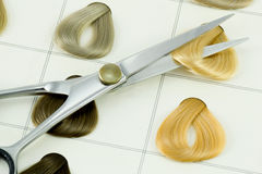 образцы волос цвета Стоковые Фотографии RF