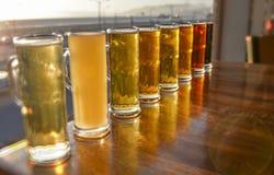 Образцы пива Стоковая Фотография