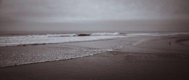 Образ жизни битника пляжа Калифорнии стоковое фото rf