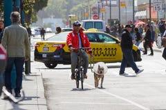 Образ жизни в Сан-Франциско Стоковые Изображения RF