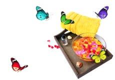 Образ жизни лета Стоковые Фото