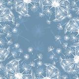 Обрамите одуванчики нарисованные рукой на голубой предпосылке иллюстрация штока