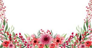 Обрамите цветки сада акварели eith красные и листья зеленого цвета иллюстрация штока