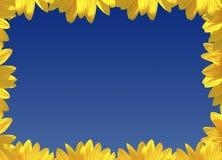 обрамленная весна Стоковые Изображения RF