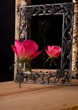 Обрамляют розовую розу и свое отражение стоковая фотография rf