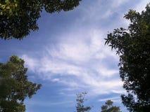 Обрамленные белые облака Стоковое Фото