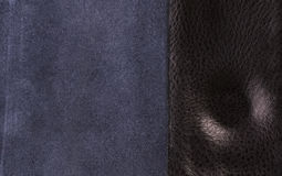 Обратная сторона кожи Стоковая Фотография RF