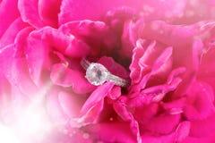 Обручальное кольцо захвата диаманта в цветке розовой нежности розовом стоковая фотография rf