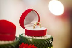 Обручальное кольцо, цена невесты обручального кольца закрепляя цифровая иллюстрация градиента включила символы путя сетки wedding стоковое изображение rf