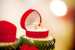 Обручальное кольцо, цена невесты обручального кольца закрепляя цифровая иллюстрация градиента включила символы путя сетки wedding стоковая фотография rf