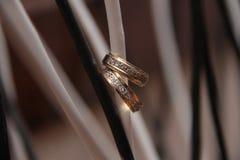 Обручальные кольца вися на a стоковые фото