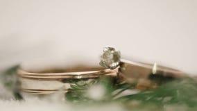 Обручальные кольца в снеге Макрос сток-видео