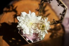 Обручальные кольца в шкатулке для драгоценностей на деревянной текстуре отделывают поверхность Стоковое Фото
