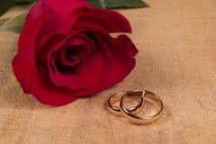 Обручальные кольца и подняли Стоковое фото RF