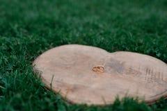 Обручальные кольца на в форме сердц древесине помещенной на траве Стоковое Изображение RF