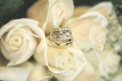 Обручальные кольца на запачканной нежностью предпосылке роз Стоковое фото RF