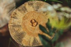 Обручальные кольца на пне в зеленой траве Стоковое Изображение RF