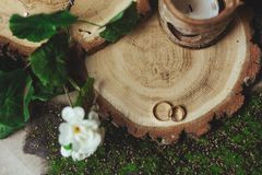 Обручальные кольца на пне в зеленой траве Стоковая Фотография