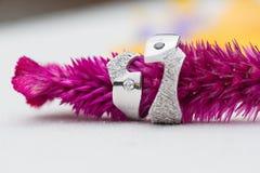 2 обручального кольца платины на белой предпосылке Стоковые Фотографии RF