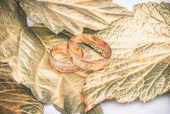 Обручальное кольцо и листовые золота Стоковые Изображения