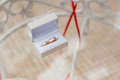 Обручальные кольца в коробке цвета слоновой кости Стоковые Фотографии RF