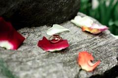 Обручальные кольца лежат на большой каменной лужайке Стоковое Изображение RF