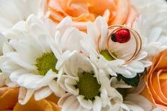 Обручальные кольца лежат на букете оранжевых роз и белых цветов Ladybug Стоковые Фотографии RF