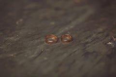 Обручальные кольца, лежа на пне Стоковые Фото