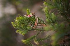 Обручальные кольца закрывают вверх Стоковая Фотография