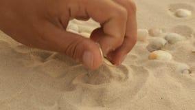 Обручальные кольца золота в песке моря видеоматериал