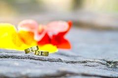 Обручальные кольца и цветки золота на каменной предпосылке Стоковое Изображение RF