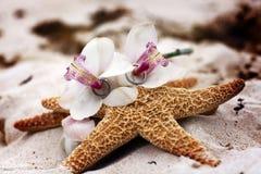 Обручальные кольца на белых орхидее и морских звёздах на пляже Стоковое Изображение
