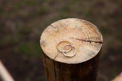 Обручальные кольца на деревянной предпосылке Стоковые Изображения