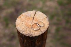 Обручальные кольца на деревянной предпосылке Стоковое Фото