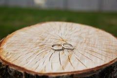 Обручальные кольца на деревянной предпосылке Стоковые Фотографии RF