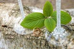 Обручальные кольца на журнале с листьями зеленого цвета и weding стеклом Стоковая Фотография