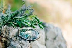 Обручальные кольца на камне и оливковой ветке Ювелирные изделия свадьбы Стоковые Изображения RF