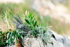 Обручальные кольца на камне и оливковой ветке Ювелирные изделия свадьбы Стоковое Фото