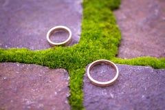 Обручальные кольца на камне Стоковые Фото