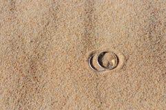Обручальные кольца на песке Стоковые Изображения RF