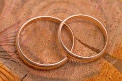 Обручальные кольца на пне дерева Стоковые Фото