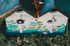Обручальные кольца на Birdhouse Стоковые Изображения RF