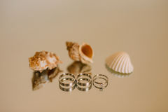 Обручальные кольца новобрачных на зеркале Стоковая Фотография