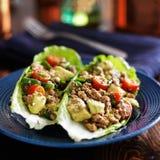 Обручи салата индюка авокадоа на плите Стоковое Изображение