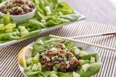 Обручи салата омара Hoisin Стоковые Изображения RF